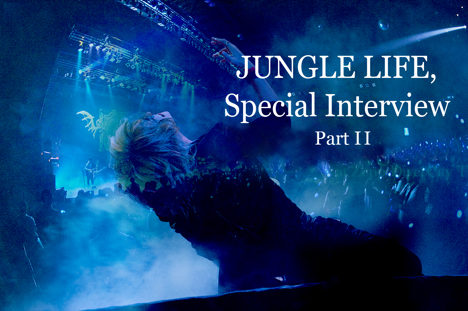 JUNGLE LIFE, Exclusive Interview Part II
